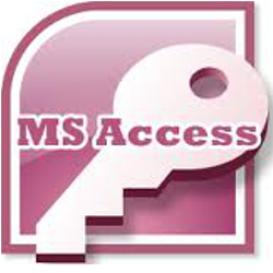 MS Access programmer Washington DC